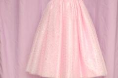 Robe princesse (1)